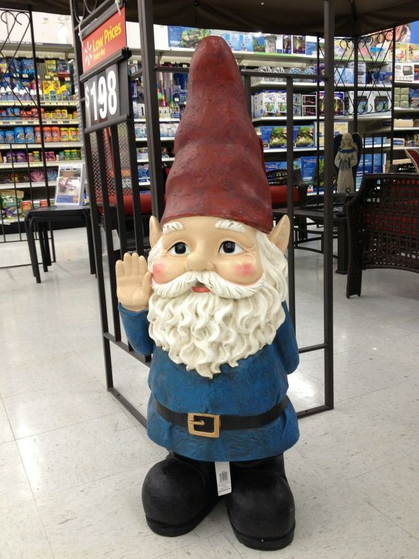 This 3 Foot Tall Gnome Has Nothing To Do With Post But I Loved Him Resisted The Urge Spend 60 On Week Though