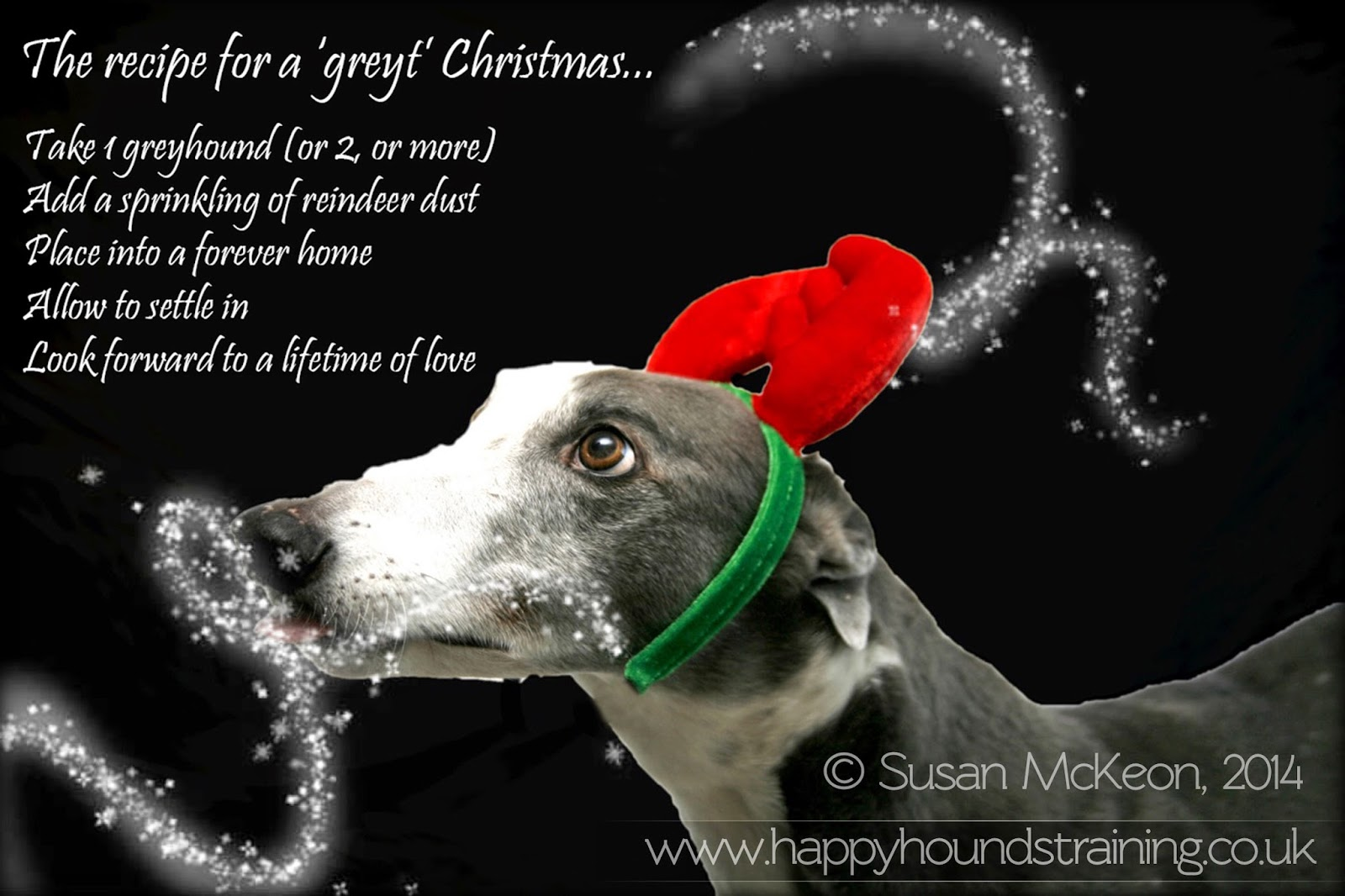 Image: Greyhound wearing reindeer antlers