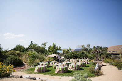 Reno Outdoor Wedding l Jeramie Lu Photography l River School Farm l Take the Cake Event Planning