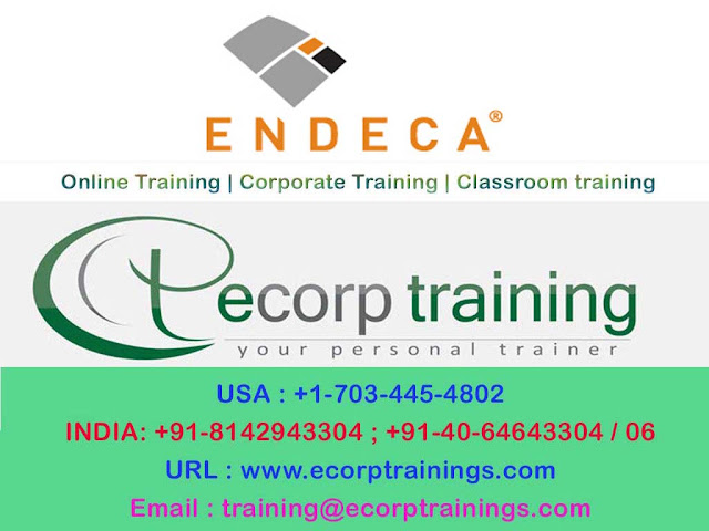 endica online training