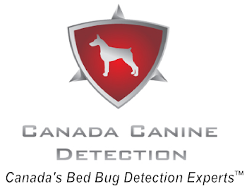 Toronto Bed Bug Detection Dog
