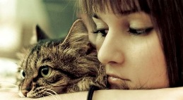 Il gatto che cura