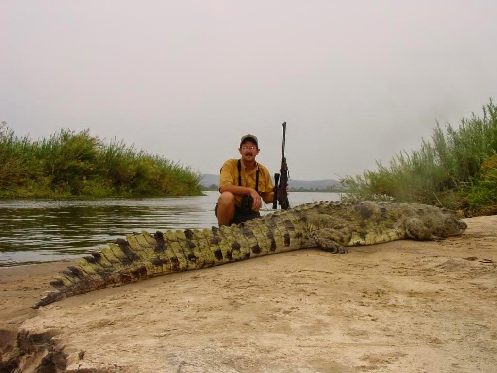 Apuntes de Safaris: Cocodrilo - Predador al acecho