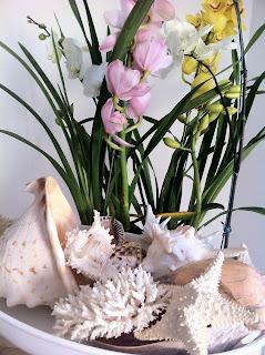 itens mar, conchas, estrela do mar, vaso de flores, flores