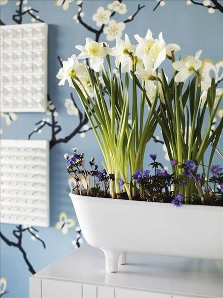 Spring decor ideas Home Decorating Ideas
