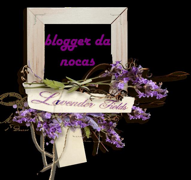 blogger da nocas
