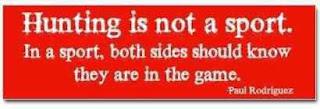 A Caça não é um desporto.