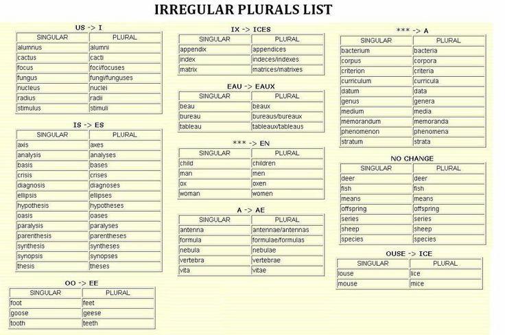 FAST TRACK ENGLISH: สูตร Plural Form