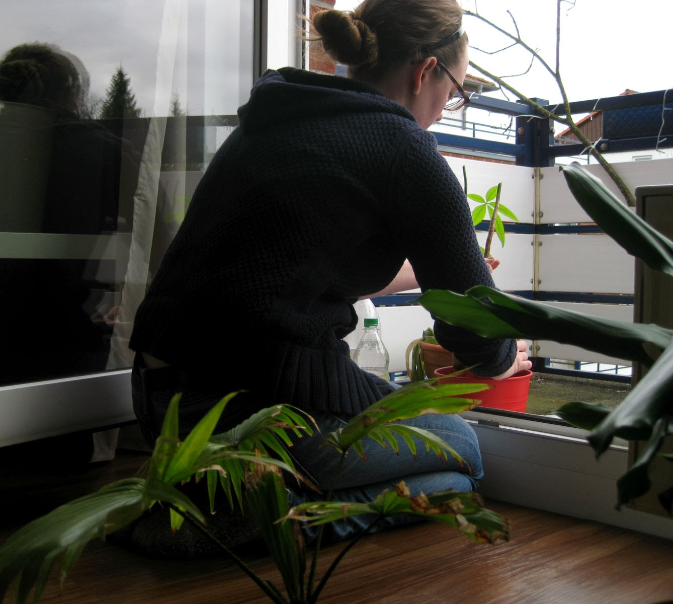 Re-potting plants on the balcony