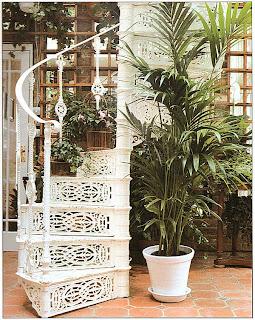 Выразительное высокое растение, как эта пальма, задерживает на себе взгляд в оранжерее