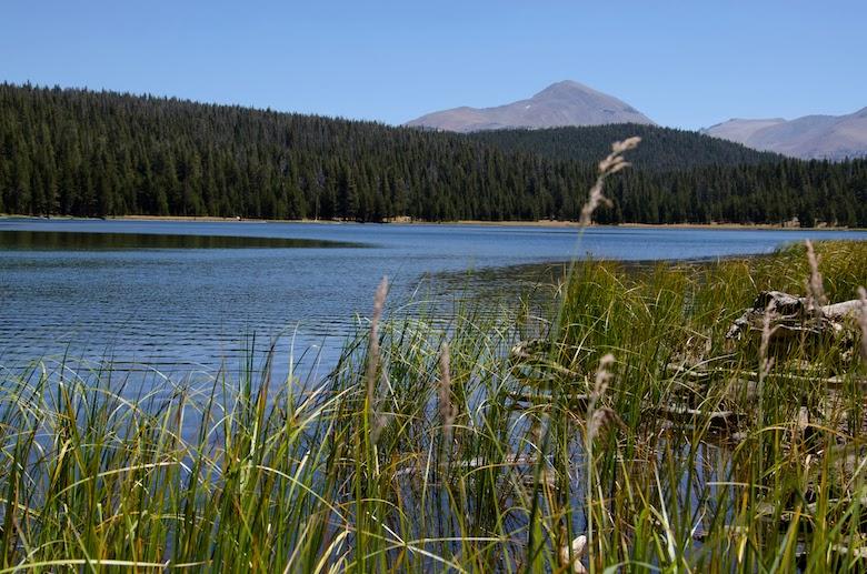 Yosemite National Park Dog Lake