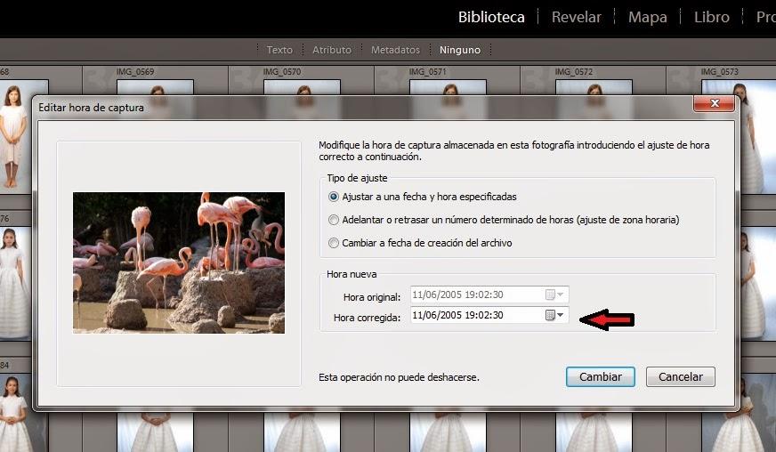 Best binary option robot review
