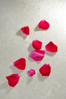 rose-petals.jpg
