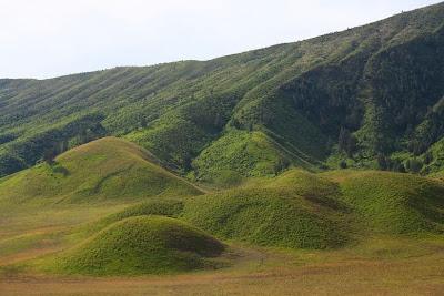 Padang Savana Bromo / Bukit teletubbies