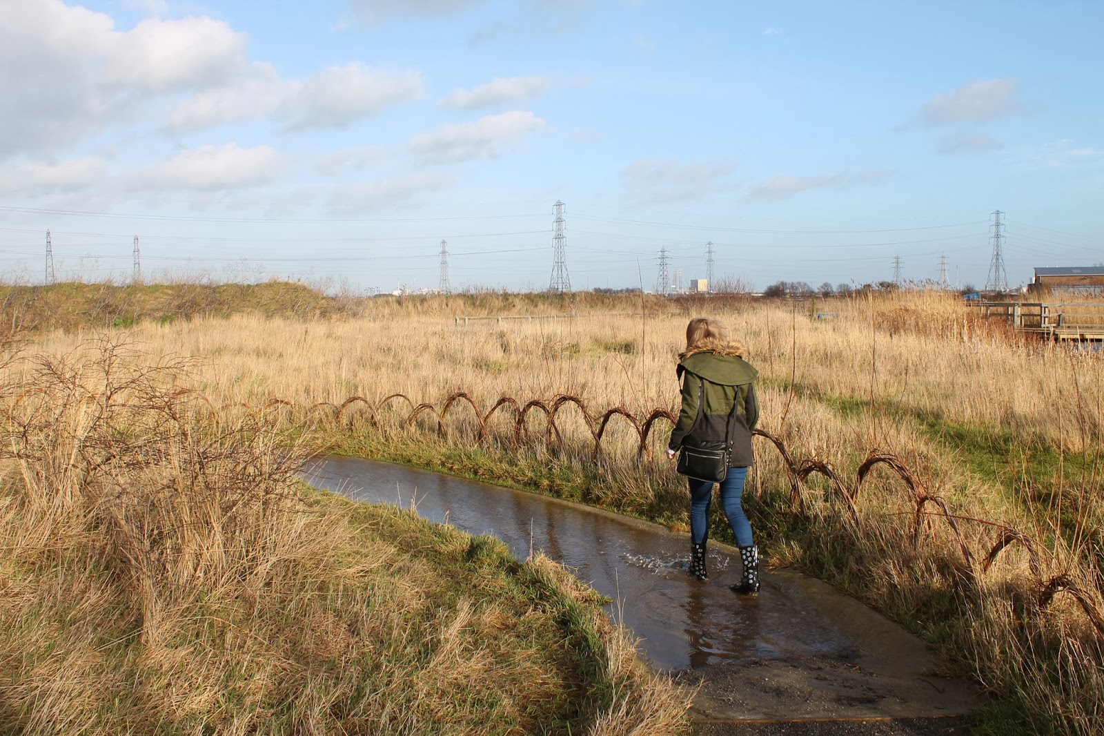 Saltholme wildlife reserve and discovery park RSPB Stockton