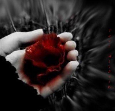 Rosas negras con frases tristes para dedicar (4) Imágenes  - Imagenes De Rosas Negras Con Frases Tristes