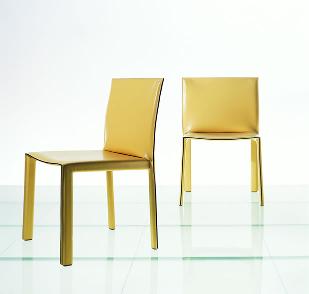 Magnificent Modern Dining Chairs 619 x 589 · 24 kB · jpeg