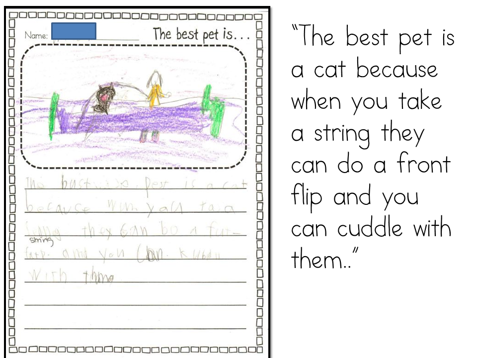 descriptive essay about a cat How to begin an essay for students  you've likely heard the phrase 'there is more than one way to skin a cat  the narrative essay the descriptive.