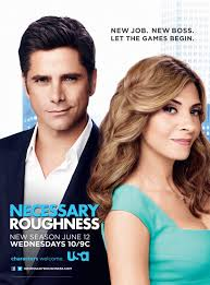 NECESSARY ROUGNNESS 3x11