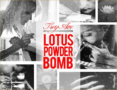 Troy Ave - Lotus Powder Bomb