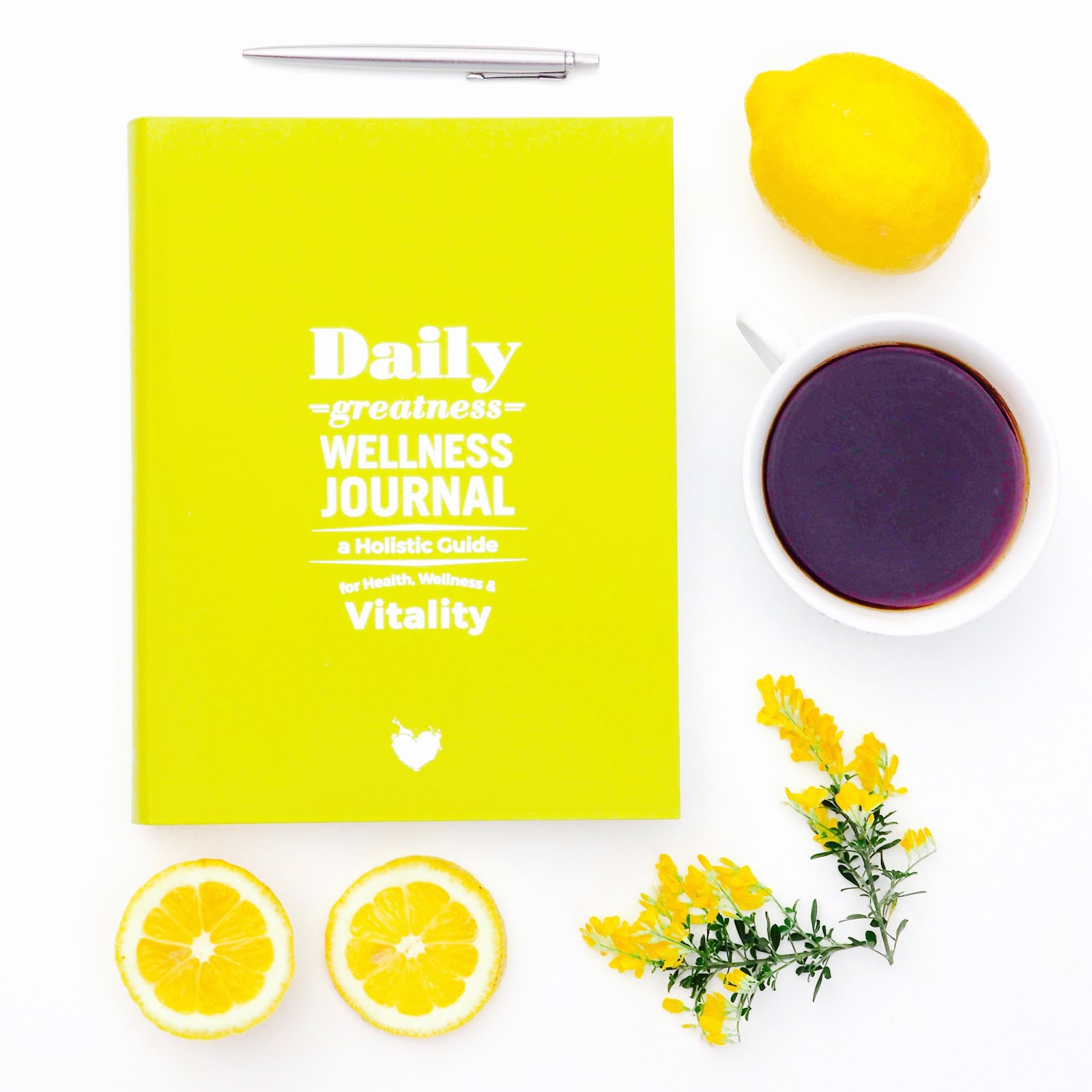 KEEP HEALTHY WITH DAILY GREATNESS WELLNESS JOURNAL