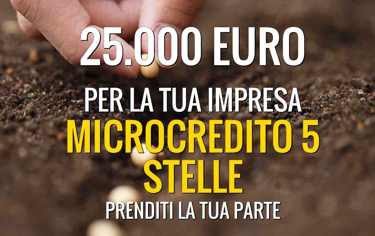 MicroCredito di 25000€
