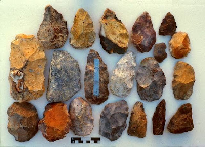 LAKE MANIX LITHIC INDUSTRY