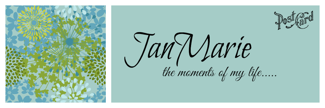 JanMarie the moments of my life