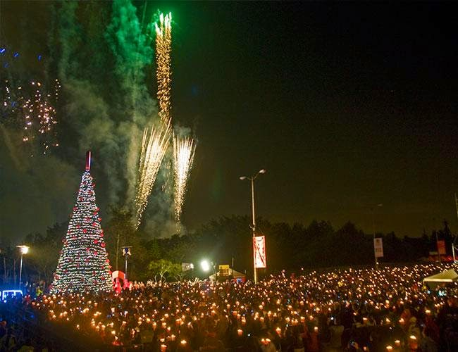 Noche de velitas 2014 en Bogota