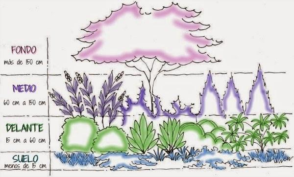 c mo combinar las plantas esquema de plantaci n guia de On como combinar plantas en un jardin