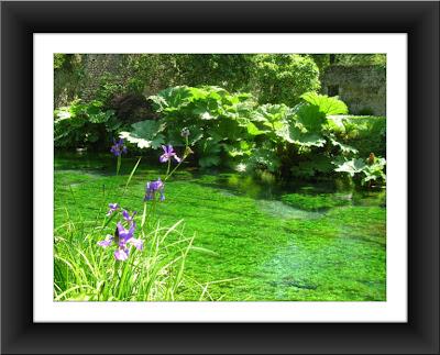 Artzigogoli il giardino segreto di ninfa for Giardino di ninfa orari