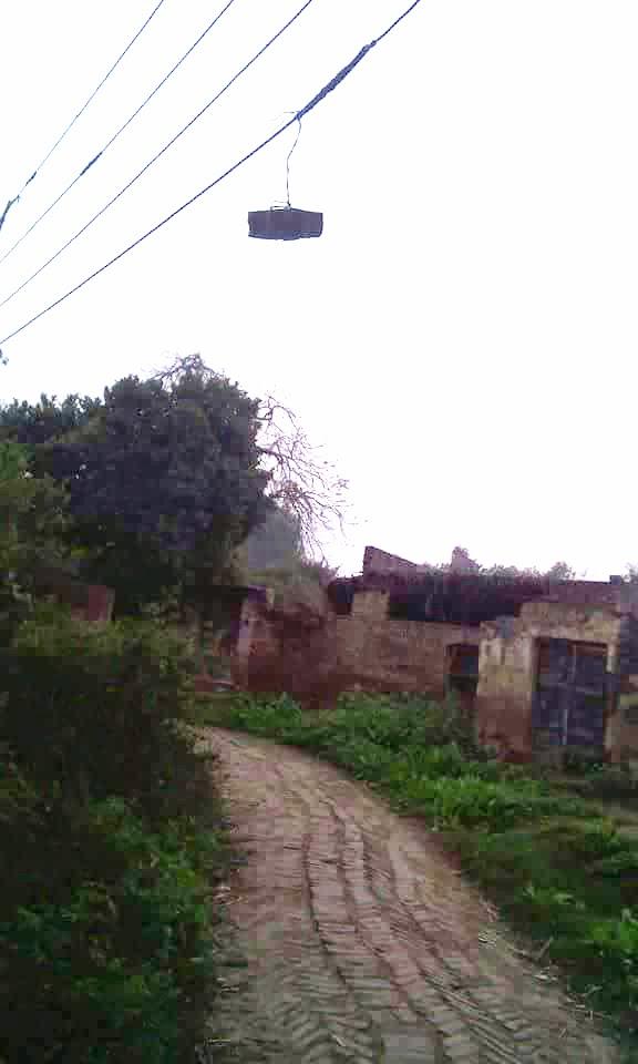 विद्युत विभाग उत्तर प्रदेश