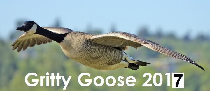 Gritty Goose Gravel Grinder 2017