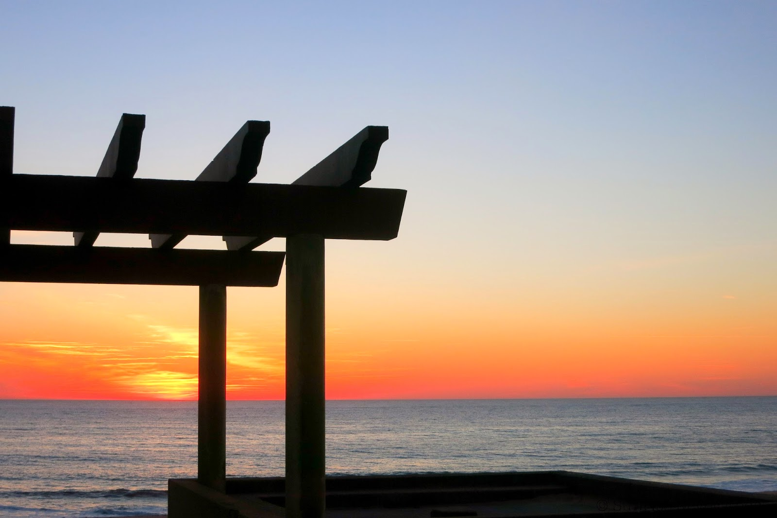sunset,hossegor,hossegor surf club,la centrale