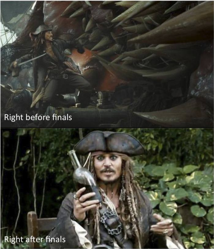 What We Do Before And After The Final Examinations!