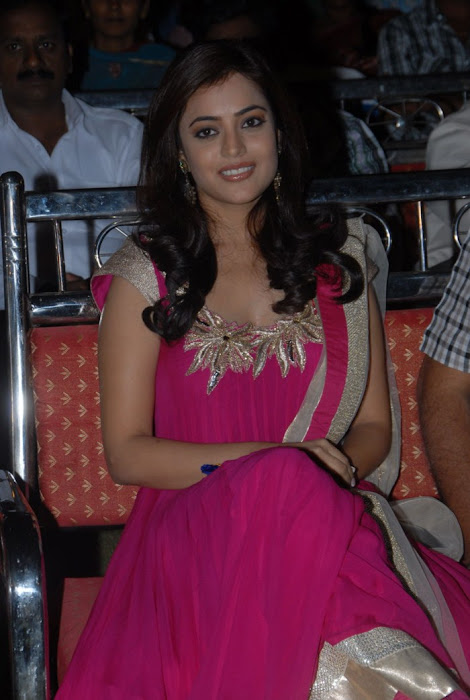nisha agarwal at solo audio launch, nisha agarwal new photo gallery