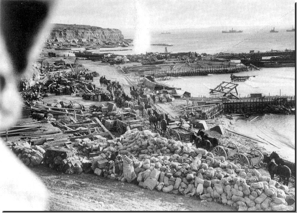 gallipoli essay