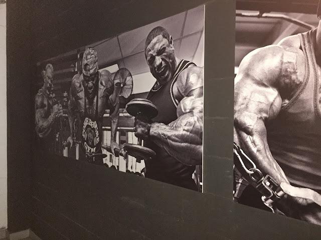 Trójmiejskie siłownie - PowerPit Gym