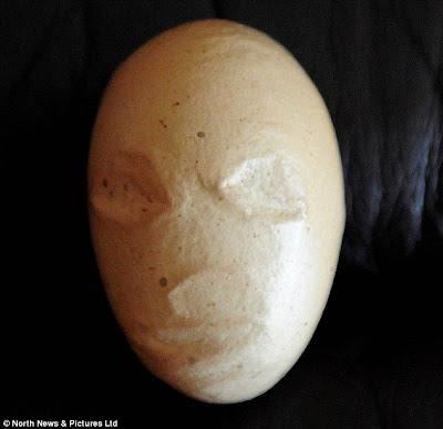 telur berwajah alien