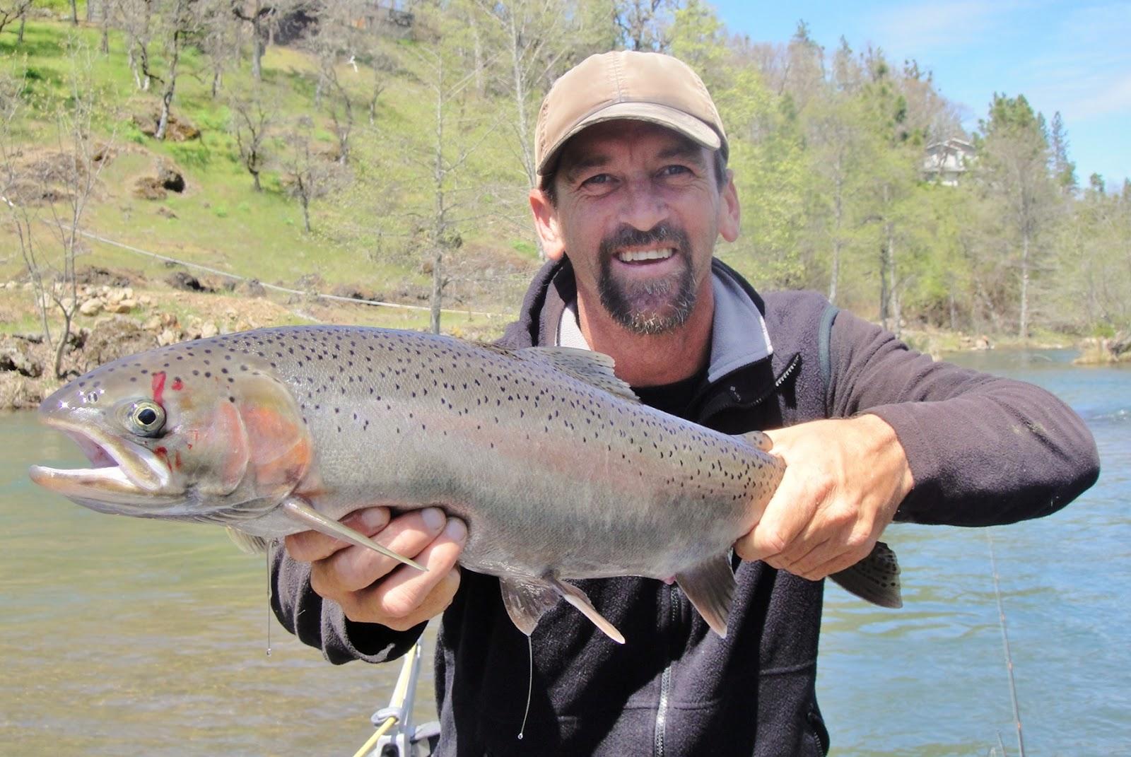 Rogue river fishing guide 39 s trip report rogue river for Rogue river fishing report