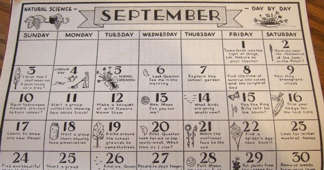 Natural Science Through The Seasons Calendar August