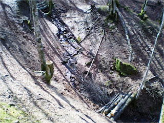 Diques de empalizadas para control de erosión