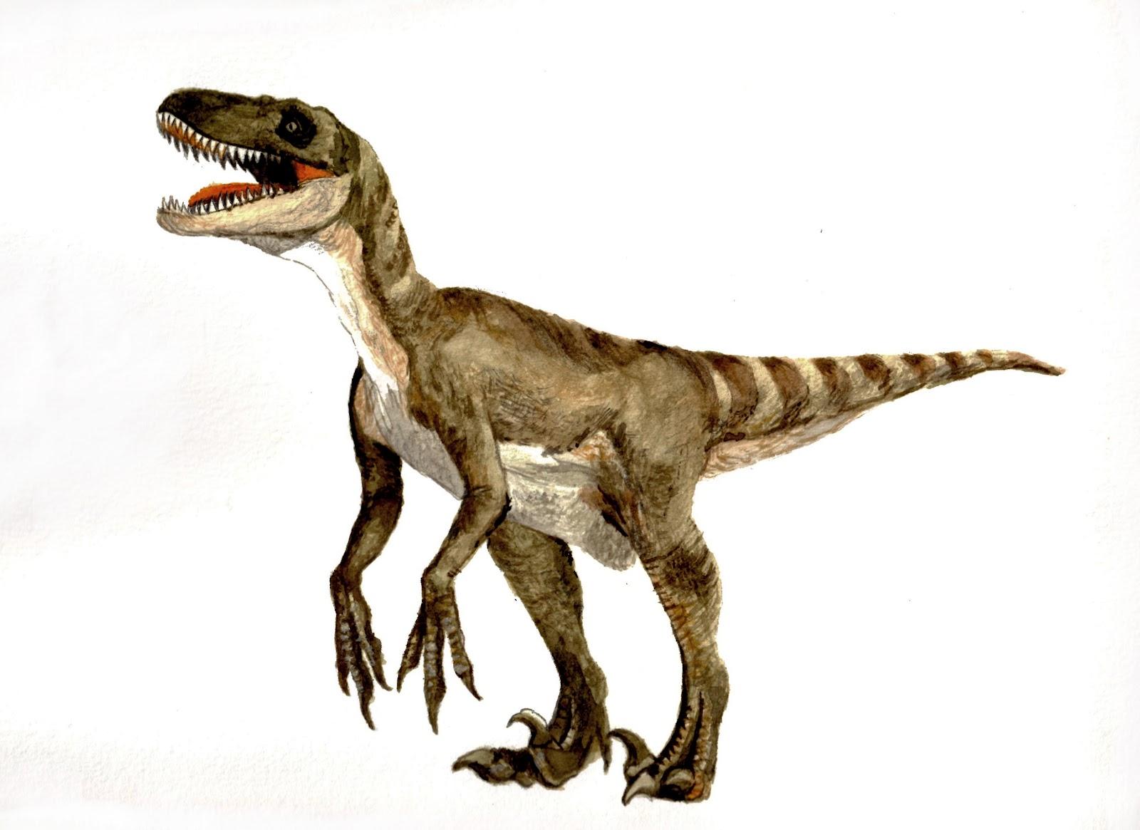 Velociraptor porn nackt movies