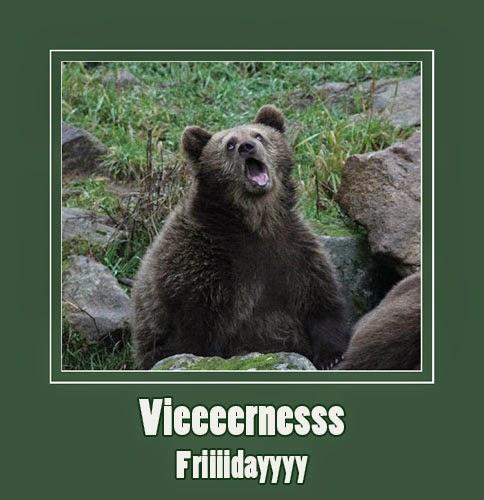 bear-sarcastic-face-yawn