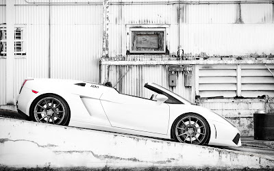 White Lamborghini Gallardo Spider Adv1 HD Wallpaper