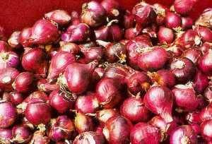 Khasiat Bawang Merah Buat Kesehatan