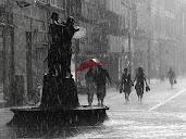 #9 Rain Wallpaper