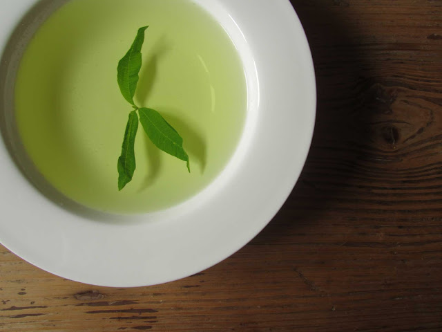 brodo broth vegetale con verbena