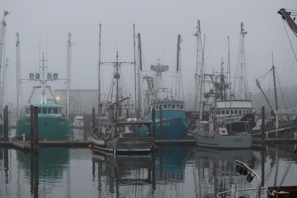 At sea level august 19 23 2015 charleston marina coos bay for Coos bay fishing