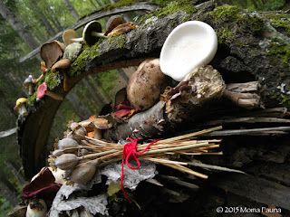 Shrine with Papaver pods from 2013's devotional garden  bound with a strand from my Summer Solstice belt.